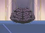 BrainControl-JP-Anime-DM-NC-2