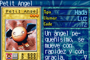 PetitAngel-ROD-SP-VG