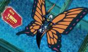 SwallowtailButterspy-JP-Anime-ZX-NC