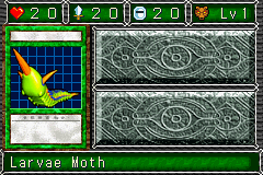 LarvaeMoth-DDM-EN-VG