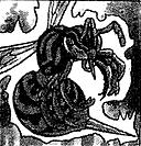 KillerNeedle-JP-Manga-DM-CA