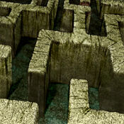 LabyrinthWall-TF04-JP-VG