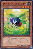 NaturiaFruitfly-DTC2-JP-DNPR-DT