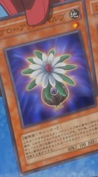 GlowUpBulb-JP-Anime-5D
