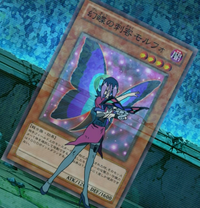 MorphoButterspy-JP-Anime-ZX