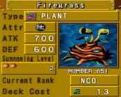 Firegrass-DOR-EN-VG
