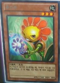 File:Flowerbot-LVAL-KR-OP.png