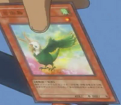 FreedomBird-JP-Anime-5D
