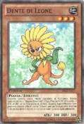 Dandylion-BP02-IT-C-1E