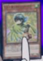 LyriluscTurquoiseWarbler-JP-Anime-AV