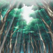 AncientForest-OW