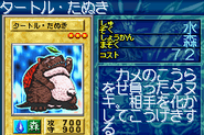 TurtleRaccoon-GB8-JP-VG