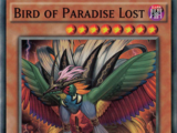 Bird of Paradise Lost