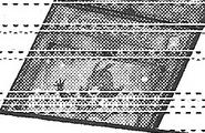 MarincessBlueSlug-JP-Manga-OS