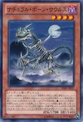Skelesaurus-SHSP-JP-C