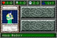 AquaMadoor-DDM-DE-VG