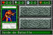 BattleSteer-DDM-FR-VG