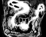 HauntedShrine-JP-Manga-GX-CA