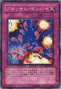BlossomBombardment-TSHD-JP-C