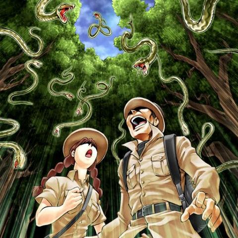 File:SnakeRain-TF04-JP-VG.jpg