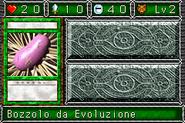 CocoonofEvolution-DDM-IT-VG