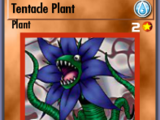 Tentacle Plant (BAM)