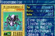 BigInsect-ROD-DE-VG