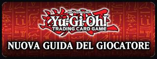 Banner guida
