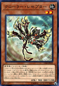 KrawlerReceptor-CIBR-JP-C