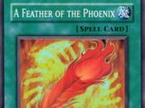 A Feather of the Phoenix