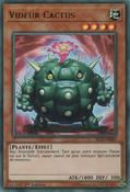 CactusBouncer-BLLR-FR-UR-1E