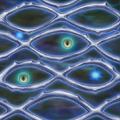InfinitePrison-TF06-JP-VG.png