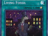 Living Fossil