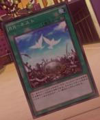 RaidraptorNest-JP-Anime-AV
