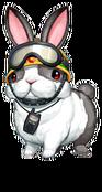 RescueRabbit-DULI-EN-VG-NC
