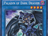 Paladin of Dark Dragon