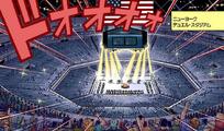 New York Duel Stadium