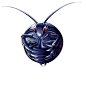 Gokibore-DULI-EN-VG-NC