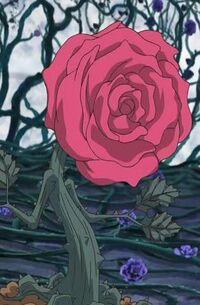 RoseToken-JP-Anime-5D-NC