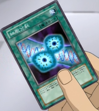 File:CellDivision-JP-Anime-DM.png