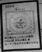 ReincarnationSprout-JP-Manga-5D