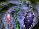Spina Malvagia