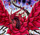Drago Rosa Nera