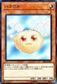 Hanewata-SR05-JP-C