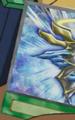 GloryShield-EN-Anime-5D.png