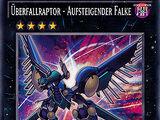 Überfallraptor - Aufsteigender Falke