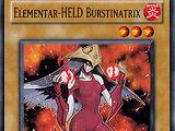 Elementar-HELD Burstinatrix