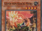 Käfer von Koa'ki Meiru