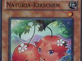 Naturia-Kirschen