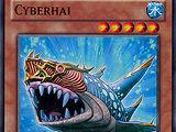 Cyberhai